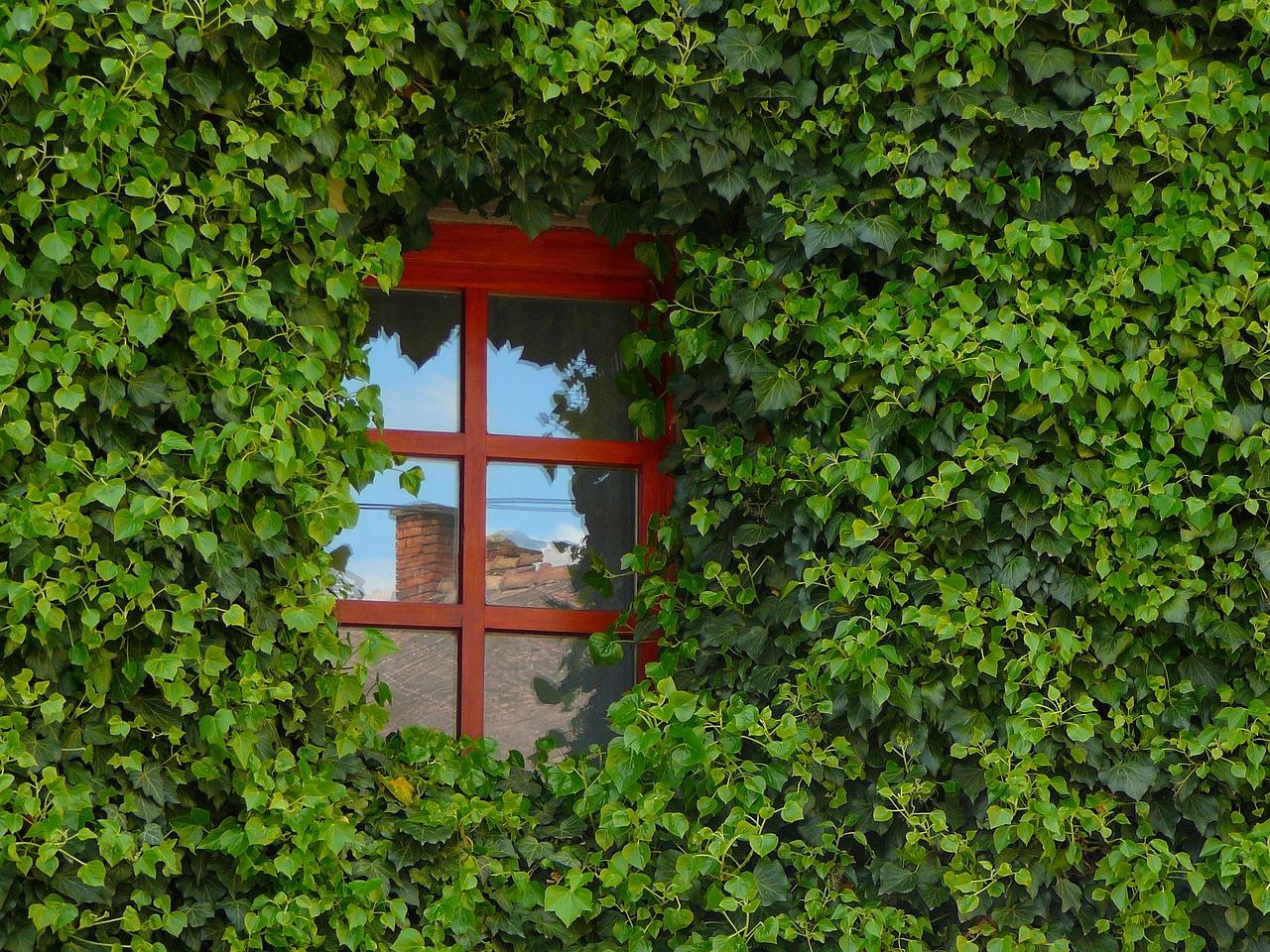 Isoler les fenêtres pour économiser de l'énergie